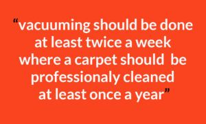 How-often-clean-your-carpet