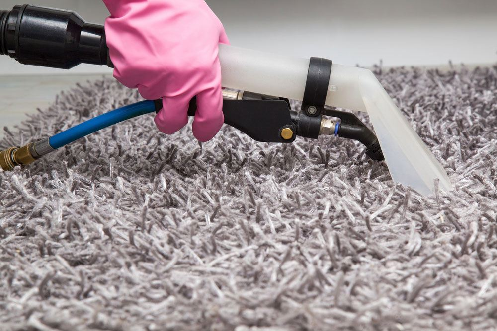 dry-carpet-cleaning-solution