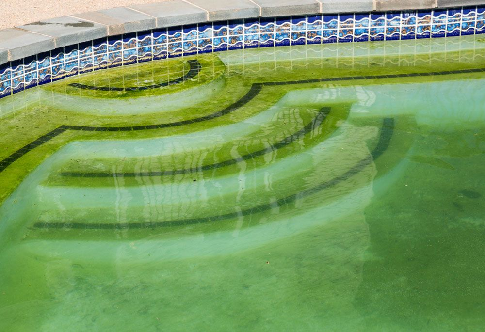 What-Causes-Swimming-Pools-to-Turn-Green