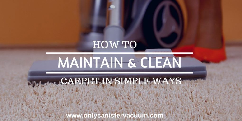 How to Maintain and Clean Carpet